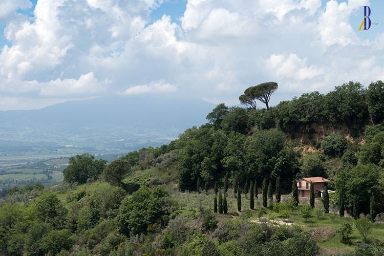 Unexpected Umbria - Monteleone di Orvieto