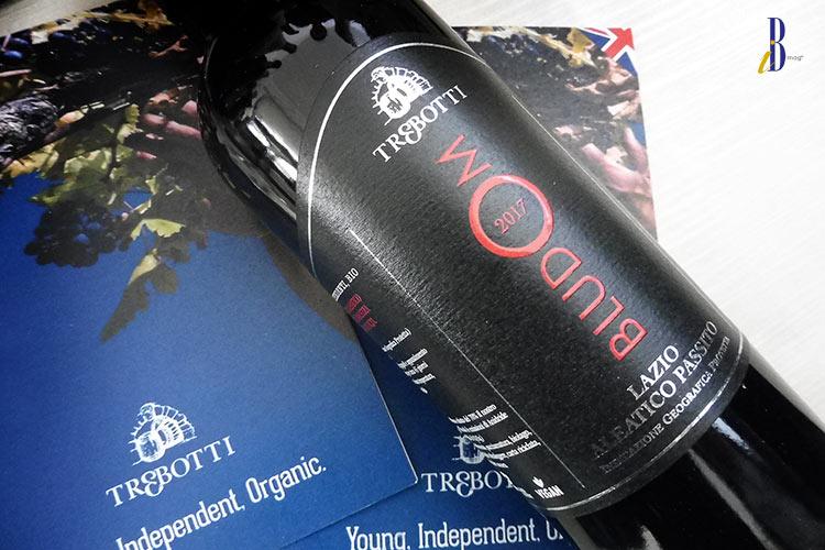 FIVI Wines from Lazio
